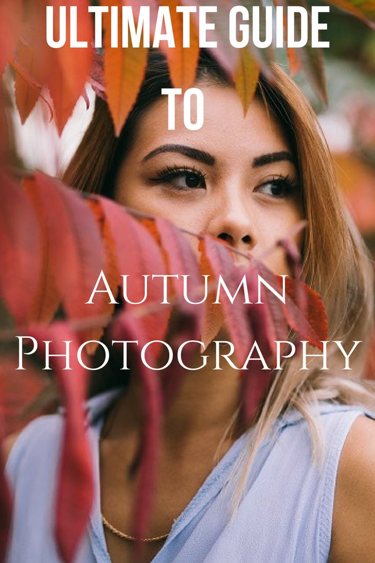 Ultimativer Leitfaden für Herbst / Herbst-Fotografie