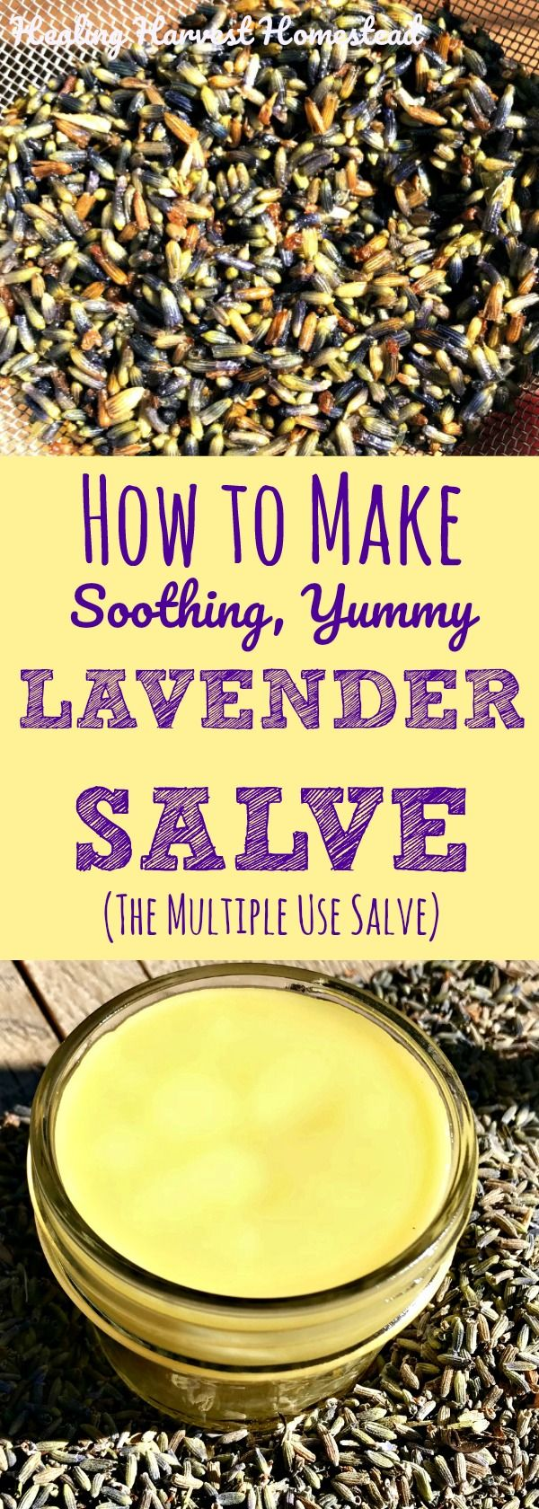 Lavender salve, made with oils infused with lavender buds and lavender essential oil, is an incredibly useful gift that your friends and family will appreciate so much! Here is my recipe and directions for how to make lavender salve, quickly and easily!