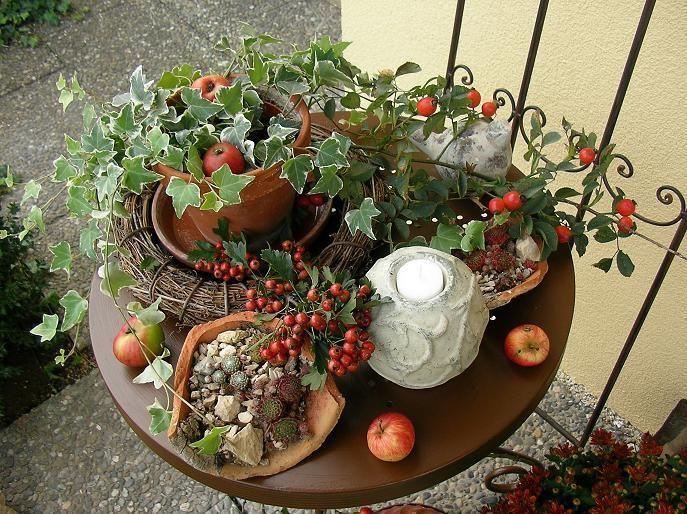 Mein Schöner Garten Herbst