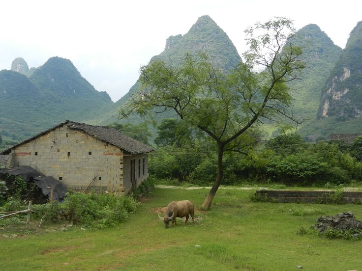 The timeless serenity of village China. An eroding lifestyle as people keep moving to the cities.
