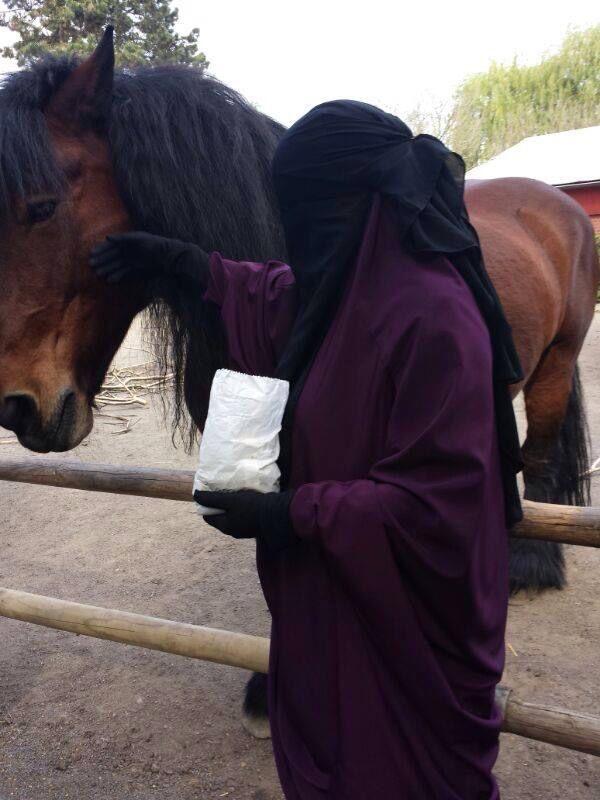I wished i had a horse