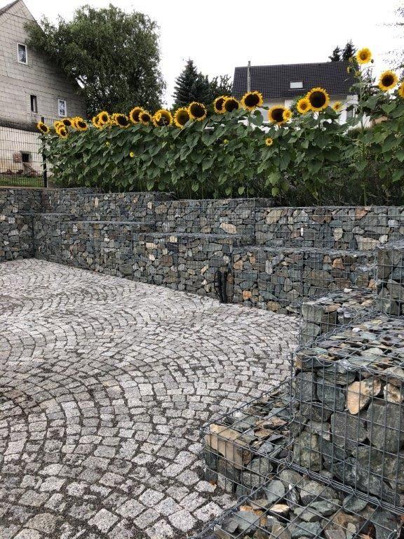 Spiral Gabionen Spiralgabionen Gabionen Hangsicherung Gabionen Gabionen Hangsicherung Gartengestaltung