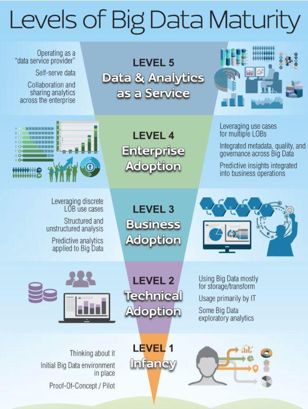 Levels of Big Data Maturity.