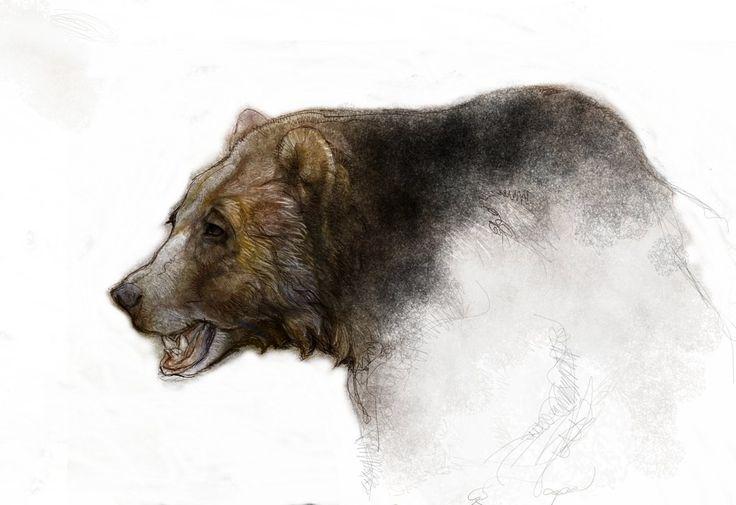 Kodiak ,Grizzly,Brown Bear sketch by KevinNichols on deviantART
