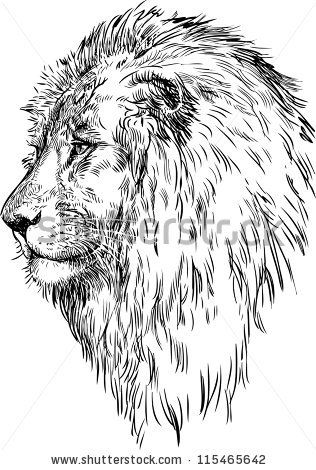profile of a lion - stock vector