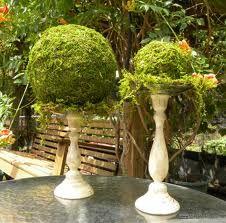 messy moss balls on candlesticksFlower Ball, Moss Centerpieces, Wedding Decor, Theme Parties, Google Search, Moss Ball, Garden Parties, Moss Gardens, Gardens Parties