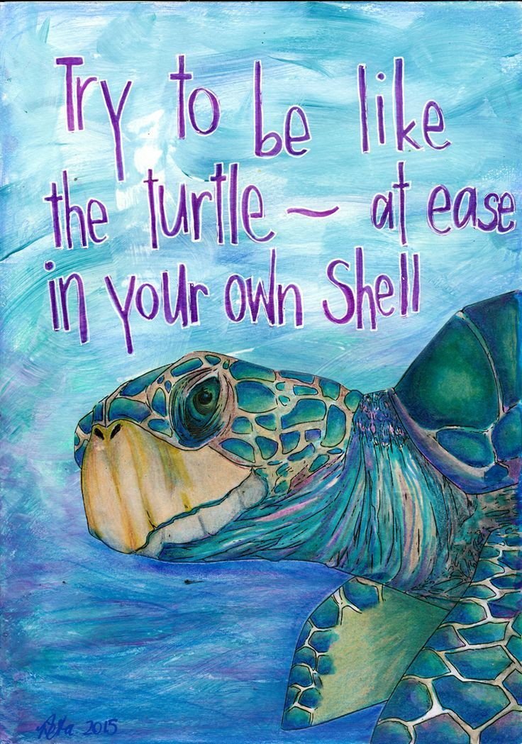 Be like Cooper and be at ease in your own shell!