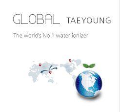 GLOBAL TAEYOUNG