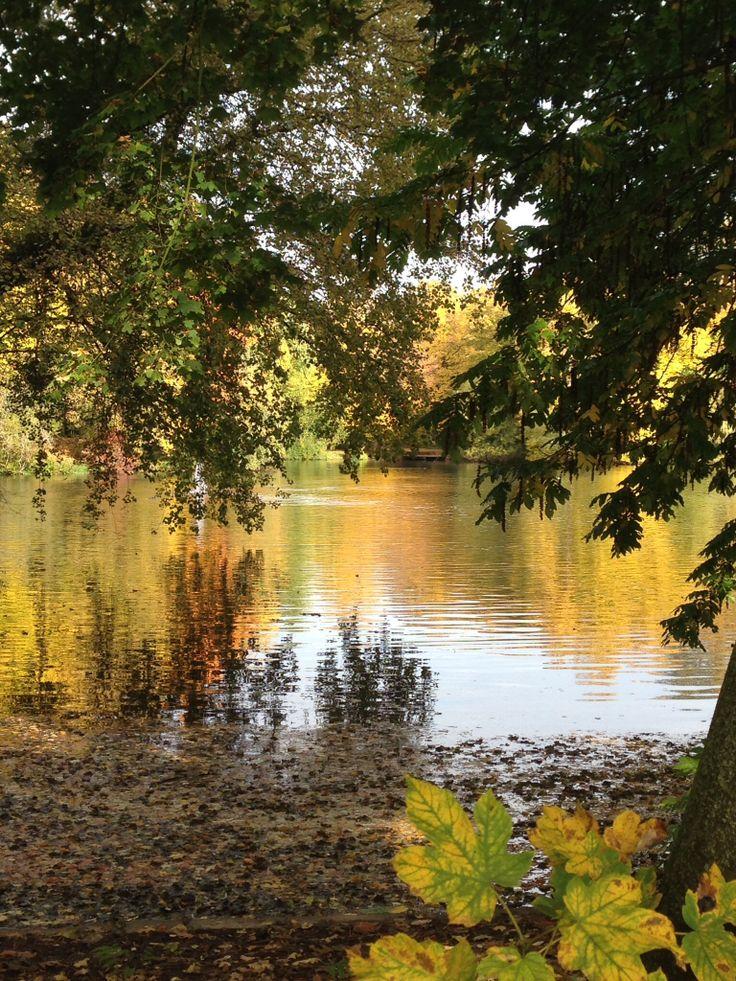 Der Volksgarten im Herbst