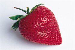 Oppskrifter på syltetøy og marmelader