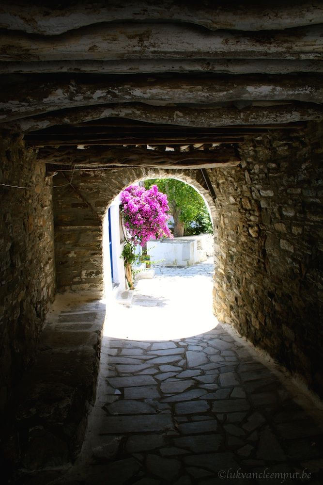 Bougainvillier and arch at Potamia Tinos Island