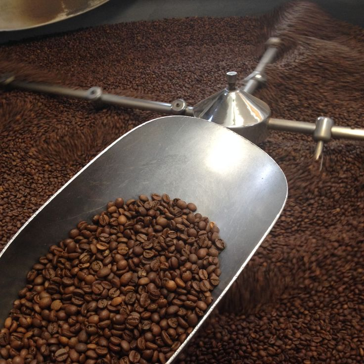 Tostatura del caffè. Coffee roaster Torrefazione ABC caffè