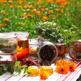 Bloemen, kruiden en zaden naast weckpotten met eigengemaakte shampoo en zeepjes.