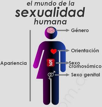 El mundo de la #sexualidad humana