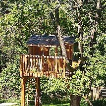 Building A Treehouse#/1135092/building-a-treehouse?&_suid=1368892618345037415901301833554