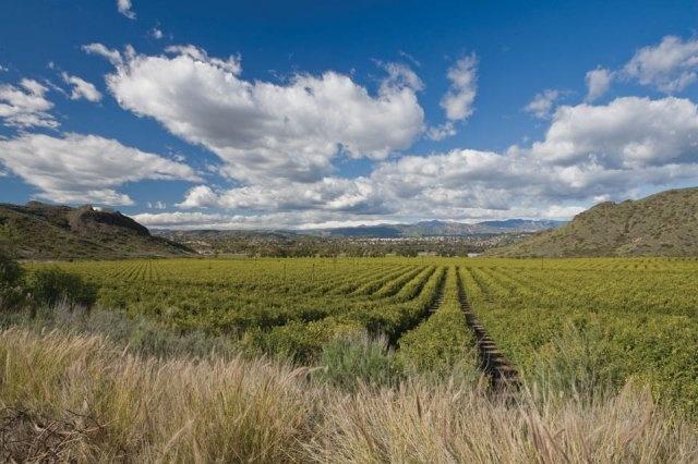 28 best camarillo  california images on pinterest