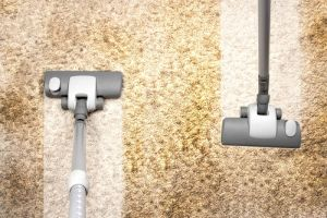 What Does a Professional Carpet CleaningDo?