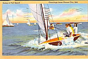 9 best fishing license books postcards images on pinterest for Maryland boat fishing license