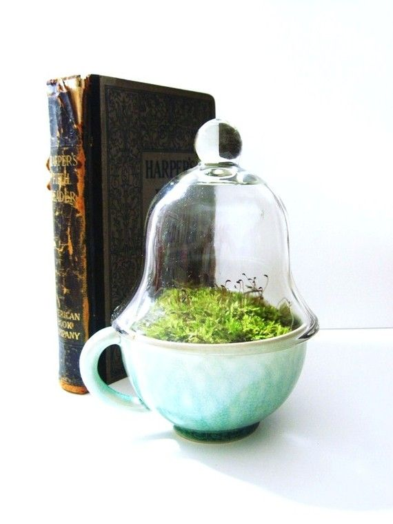 Vintage Teacup Terrarium: Vintage Teacups, Unhelp Life, Teacups Features, Orphan Teacups, Indoor Gardens, Life Lessons, Cute Ideas, Teacups Terrarium Interesting, Interesting Ideas