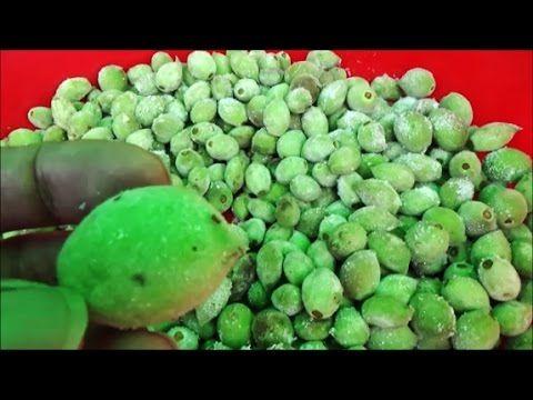 천기누설 개복숭아 - YouTube