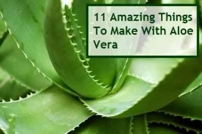11 Amazing Things To Make With Aloe Vera Health
