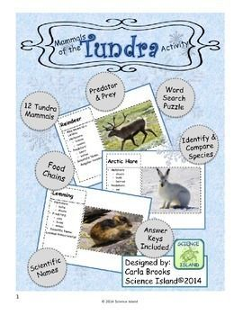 Mammals of the Tundra FREE Activity! Study classification, predator/prey relationships, and more!