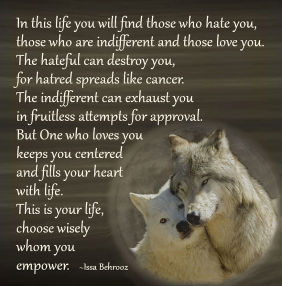 647 best images about wolf sayings and wolf wisdom en ...