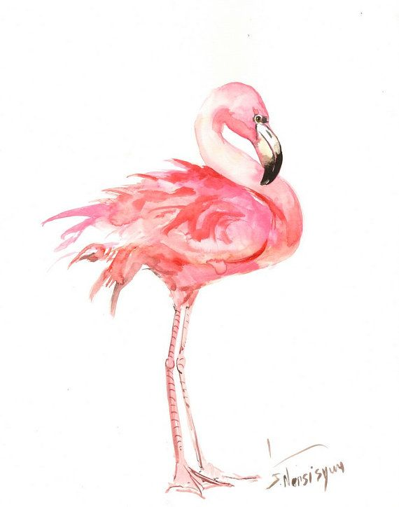 Hey, I found this really awesome Etsy listing at https://www.etsy.com/listing/222047209/flamingo-painting-original-watercolor