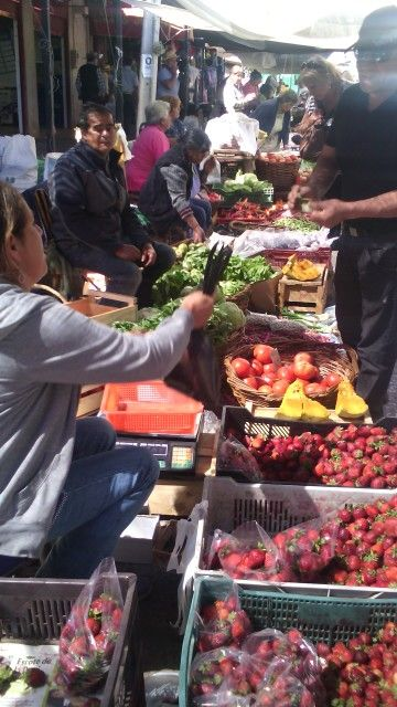 Feria de cauquenes, Maule, chile