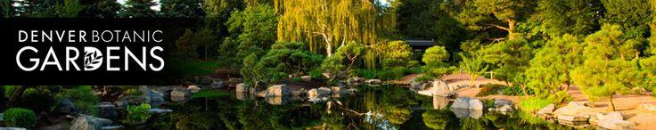 York Street | Denver Botanic Gardens