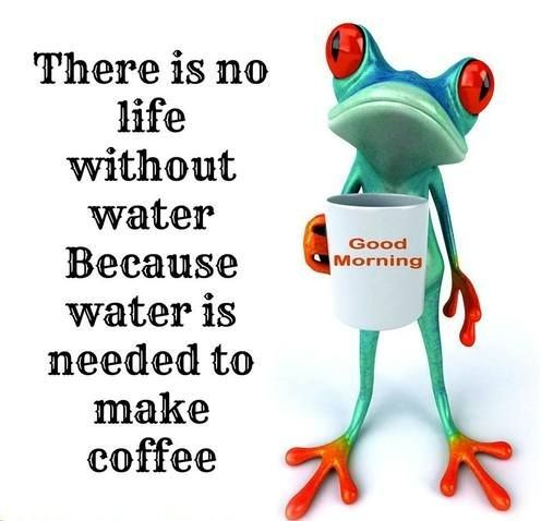 Funny Morning Coffee   ... Funny Quotes, Funniest Jokes, Images, Photos, Pics   Morning Jokes (20
