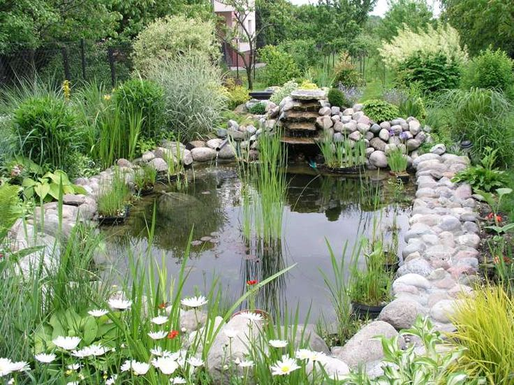 bassin de jardin ovale entouré de pierres naturelles, de graminées d'ornement et de fleurs