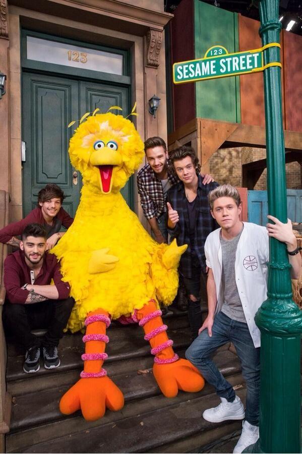 Screw One Direction!!! IT'S FREAKING BIG BIRD AHHHHHHHHH CHILDHOOD MAN