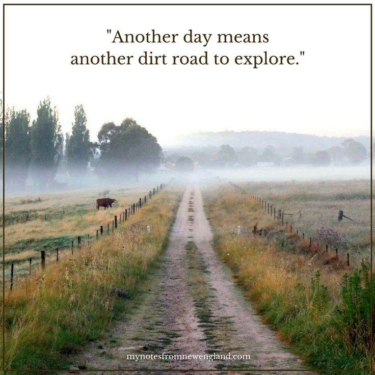 Another day means another dirt road to explore.