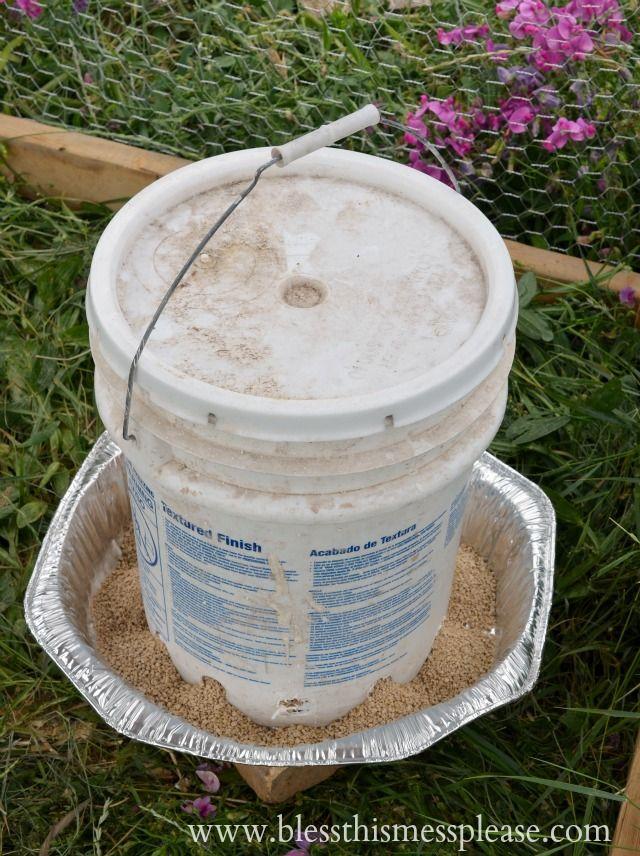 L'eau de poulet bricolage et d'alimentation des seaux de 5 gallons de www.blessthismessplease.com
