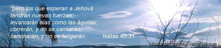 """Isaías 40:31 """"pero los que esperan a Jehová tendrán nuevas fuerzas; levantarán alas como las águilas; correrán, y no se cansarán; caminarán, y no se fatigarán"""". El águila es el ave de …"""
