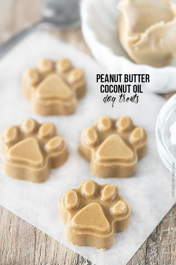 When the weather starts to heat up, we think of every way possible to cool down. Swimming, air conditioners, and frozen treats are on our lists, and there's no reason you shouldn't pamper your pooch the same way. That's right; dogs enjoy a frozen dessert now and then. Here are 17 frozen dog treats thatread more...