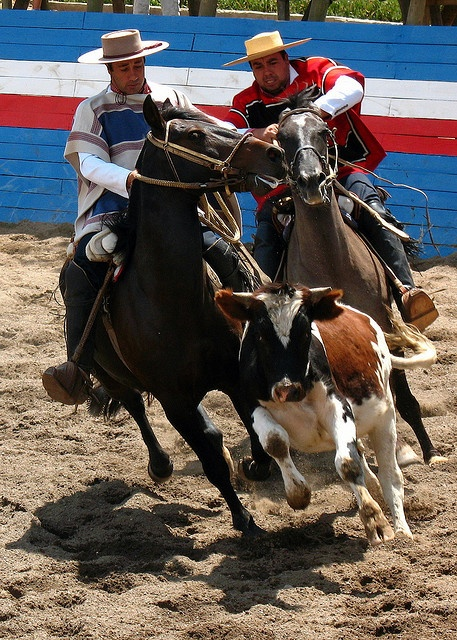Chilean Rodeo by chrismar, via Flickr