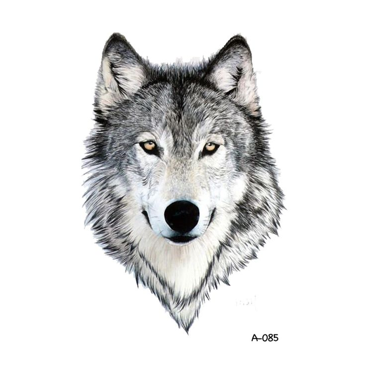 WYUEN Wolf Design Temporary Tattoo for Adults Waterproof Tatoo Sticker Body Art Fake Tattoo for Man Woman #Affiliate