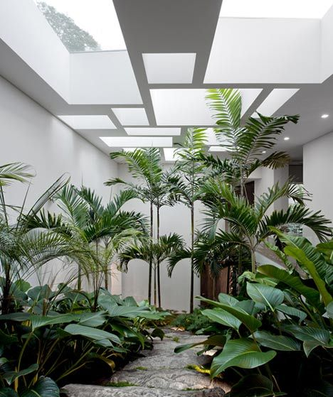 Casa Grecia by Isay Weinfeld Big leafy foliage plants. Pinned to Garden Design by Darin Bradbury.