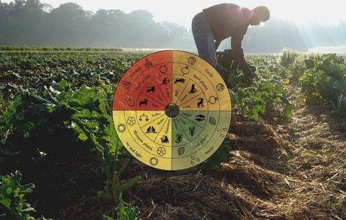 agricoltura-biodinamica-2
