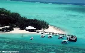 Beautiful Heron Island in the middle of the Great Barrier Reef. Have stayed there 3 times!