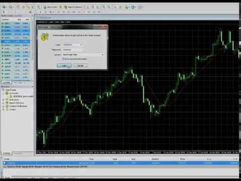 How to open a Forex Trading account? - YouTube