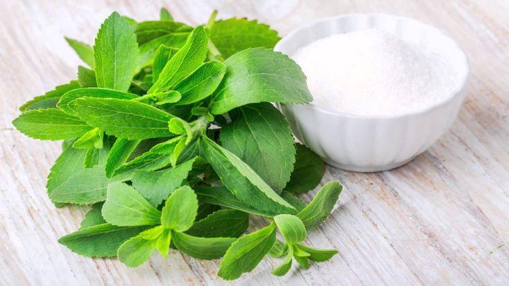 Στέβια (Stevia rebaudiana) ή μελόφυλλο (honey leaf), ή γλυκό βότανο ή γλυκό φύλλο της Παραγουάης. Είναι ένα πολυετές και ποώδες φυτό