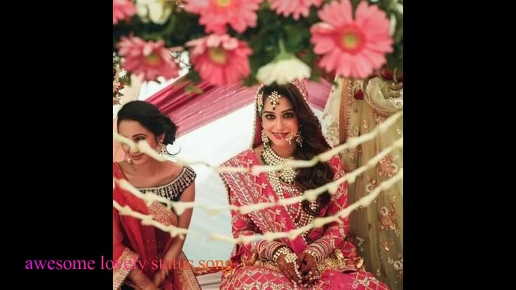 Beautiful couple status SONG /WhatsApp status  song  cute couple shoaib ...