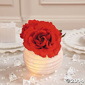 What a great idea for a centerpiece!  Find small white paper lanterns and lights at http://jadetime.com
