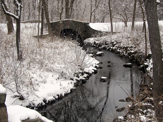 Winter Bridge in Whitnall Park by Rachel Patton, via Flickr