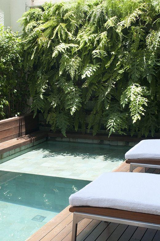 Para atender ao pedido, Bellotto elaborou um projeto que mistura vasos e jardim vertical com sistema GreenWall Ceramic. Este último, inclusive, ocupa uma parede próxima à piscina, área de maior insolação, o que facilita o desenvolvimento das espécies de samambaias escolhidas para compor o muro verde.