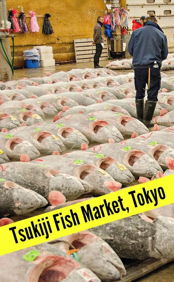 17 best images about take me to tokyo on pinterest for Wholesale fish market near me