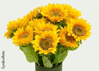 Kunstpflanze Sonnenblume  #bellaflora  #sonnenblume  #kunstblume